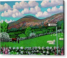 Dranagh Lane Acrylic Print by Frank Strasser