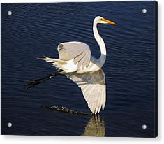 Drawing A Line In The Water Acrylic Print by Paulette Thomas