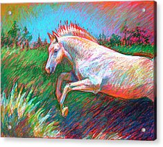 Acrylic Print featuring the painting Dream Horse by Nancy Tilles