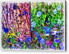 Dreaming Night And Day Acrylic Print by Angelina Vick