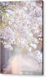 Dreaming Of Spring Acrylic Print by Jenny Rainbow