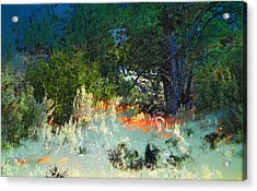 Dreaming Of Wyoming Acrylic Print by Lenore Senior and Dawn Senior-Trask