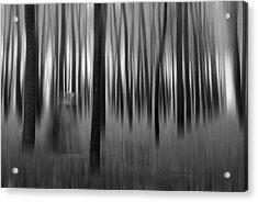 Dreams-2 Acrylic Print