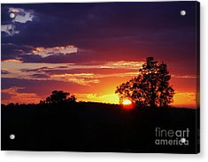 Acrylic Print featuring the photograph Dreams Golden Lining by Julie Clements