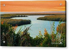 Dreamsicle Sunset Acrylic Print by Julie Dant
