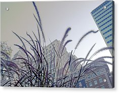 Dreamy City Acrylic Print