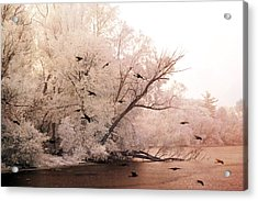 Dreamy Ethereal Infrared Lake With Ravens Birds Acrylic Print by Kathy Fornal