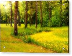 Dreamy Meadow Acrylic Print
