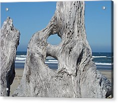 Driftwood Art Prints Coastal Blue Sky Ocean Waves Shoreline Acrylic Print by Baslee Troutman