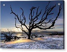 Driftwood Beach At Dawn Acrylic Print by Debra and Dave Vanderlaan