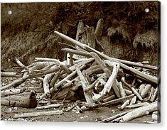 Driftwood Pile San Juan Acrylic Print