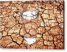 Drought Acrylic Print by Victor De Schwanberg