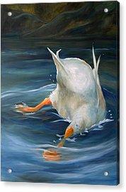 Duck Butt Acrylic Print by Mary Sparrow