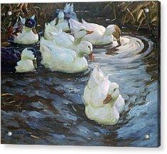 Ducks On A Pond Acrylic Print by Photos.com