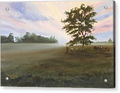 Duel At Dawn Acrylic Print by Karen Wilson