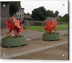 Dueling Dragons Acrylic Print