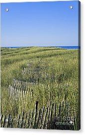 Dune Fence Acrylic Print by John Greim