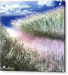 Dune Path Acrylic Print by Joseph Gallant