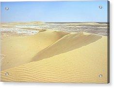 Dunes And Sabkha Acrylic Print by Paul Cowan