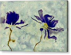 Duo Daisies Acrylic Print by Variance Collections