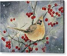 Dustie's Cardinal Acrylic Print
