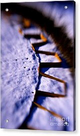 Dusty Snow And Geometry Third View Acrylic Print by Anca Jugarean