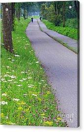 Dutch Bicycle Path - Digital Painting Acrylic Print by Carol Groenen