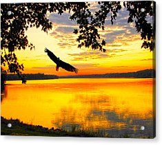 Acrylic Print featuring the photograph Eagle At Sunset by Randall Branham