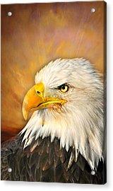 Eagle Burst Acrylic Print by Marty Koch