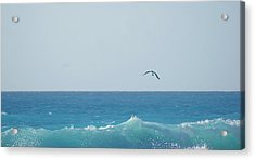 Eagle Flying Over Sea Acrylic Print by Fabian Jurado's Photography.