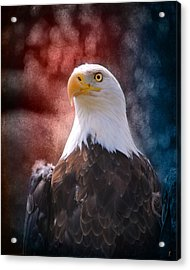 Eagle I Acrylic Print by Jai Johnson