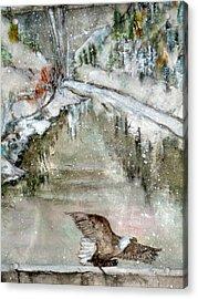 Eagle Over The Dam Acrylic Print