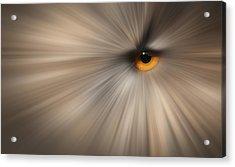 Eagle Owl Eye Abstract Acrylic Print by Andy Astbury