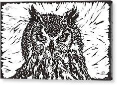 Eagle Owl Acrylic Print by Julia Forsyth