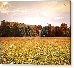Early Autumn Harvest Landscape Acrylic Print by Jai Johnson