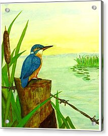 Early Morning Fisher Acrylic Print by Peter Edward Green