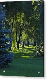 Early Morning Acrylic Print by John Stuart Webbstock