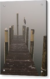 Early Morning On The Dock Acrylic Print
