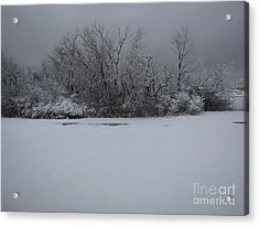Early Spring Snow Fall Acrylic Print by Cedric Hampton