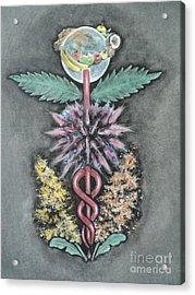 Earth Angel Acrylic Print by Carla Carson