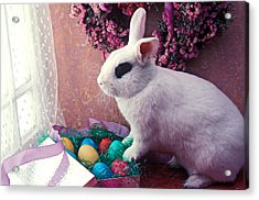 Easter Bunny Acrylic Print by Garry Gay