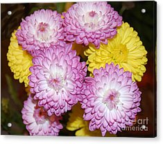 Easter Flowers Acrylic Print