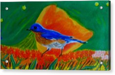 Eastern Bluebird Acrylic Print by Annette Stovall
