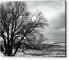 Eastern Plains Of Colorado Acrylic Print