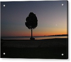 Eastern Sunset And Moon Rise Acrylic Print by Bruce Carpenter