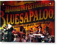 Acrylic Print featuring the photograph Edgar Winter Group 2012 by Gary Brandes