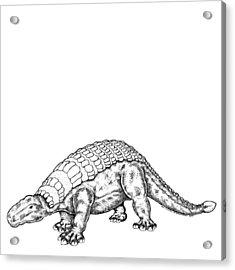 Edmontonia - Dinosaur Acrylic Print by Karl Addison