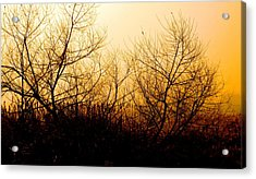 Eerie Dawn Acrylic Print