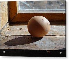 Egg On A Window Ledge Acrylic Print by Carol Berning