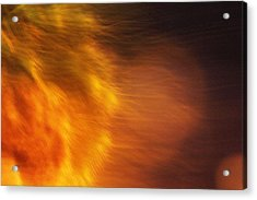 Acrylic Print featuring the photograph Egypt's Flame by Carolina Liechtenstein